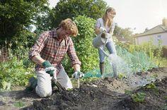 7 Awesome DIY Hacks to Get You Gardening