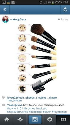 brush makeup