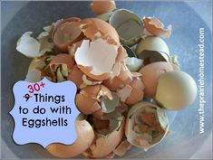 eggshells, 30 things to do with them