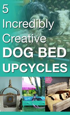 5 incredibly creative dog bed upcycles -- you probably have half of these items lying around your house!