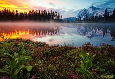 Color palette water reflections, natural photography, nature, heaven, funny pictures, colors, lakes, beauti, place