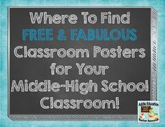 Classroom Poster Ideas for Middle / High School