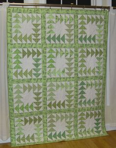 Wild goose quilt. color, thought, goos quilt, disorgan quilter, gees quilt