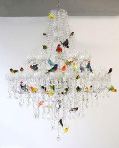Bird Chandeliers