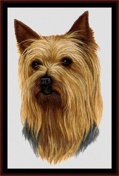 Yorkshire Terrier - Cross Stitch Collectibles fine art counted cross stitch pattern