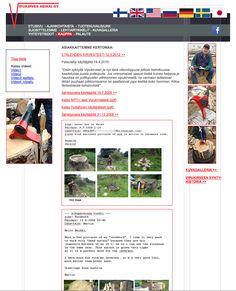 Old website of Vipuk