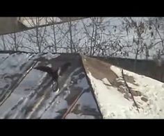 Bird Sleds Down Snowy Roof On Bottle Cap - TWiCE! : Video Clips From The Coolest One