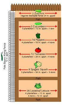 Small Vegetable Garden Plan | Pocket Vegetable Garden (Gardening in a Small Space)