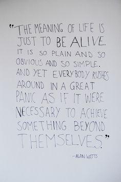 - Alan Watts