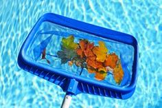 DIY Pool Maintenance | Stretcher.com - Reduce the cost of summer swimming