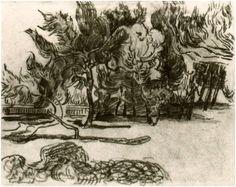 Pine Trees near the Wall of the Asylum by Vincent Van GoghDrawing, Pencil, black chalk Saint-Rémy: October - 5-22, 1889