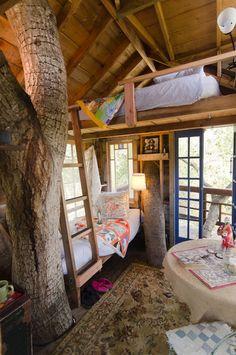cabin, dream, tree houses, house interiors, treehous, loft, trees, bedroom, kid