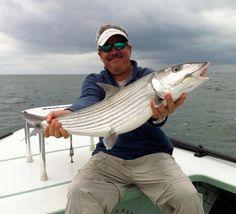 Florida Bonefish