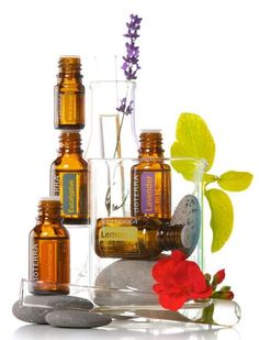 How to Apply Essential Oils - Reference Chart
