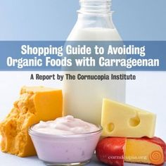You Don't Have to Eat Carrageenan: Finding Alternatives to a Toxic Food Additive - Cornucopia Institute
