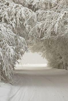 Perfect winter wedding location