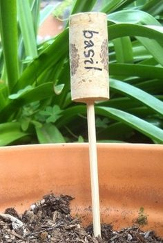 How to label the herbs in the garden