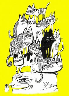 cats on the head by achikochi, via Flickr