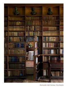 I love secret rooms and lots of books!