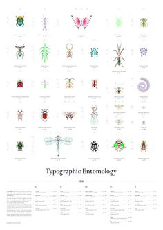 fm typographicentomology poster by studio fm milano