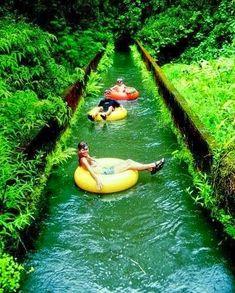 Beautiful Hawaii -Canal Tubing In Hawaii (I used to do this as a child.  It was sooooo fun).  <3k<3