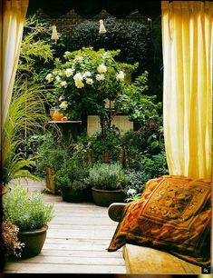 Backyard/small garden...