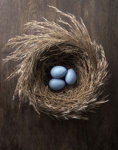 Grassy nest.