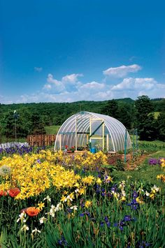 Even in winter ... Easy Hoop House to Grow More Food.