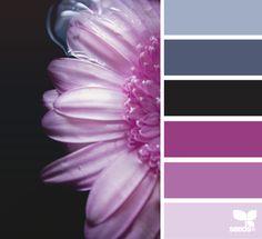 Radiant orchid color palette inspiration from Design Seeds. designseeds.com