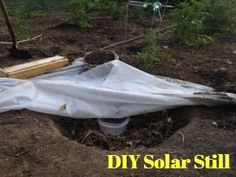 How to Build a Solar Still--a method of collecting and purifying water if you're ever lost in the wild