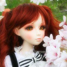 Gretel with cherry blossom