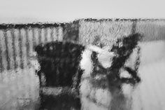 photography through glass