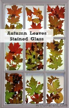 Transparent contact paper + Fall Leaves = Autumn Leaves Stained Glass