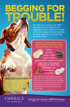 Some foods aren't just bad for your pet's waistline- they could make him sick.  For more pet tips and articles, click here- http://www.embracepetinsurance.com/Health/default.aspx
