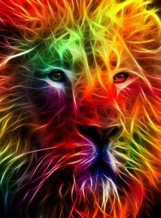 Wow. cat, neon, rainbows, digital art, leo, rainbow colors, lion of judah, lions, fractal