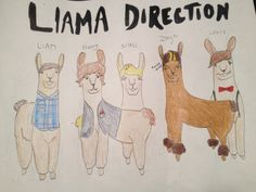 Llama Direction. I really love drawing llamas, and one of the girls who goes to the summer camp I work at told me she wanted a unique picture of llamas. She loves 1D, so this happened :)