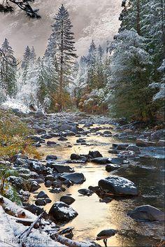 Yosemite National Park, USA, photo by Richard Gaston.