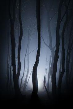 efidelity:  Shot in the darkby FinnHopson