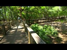 Visit Tallahassee - Nature