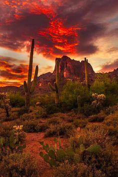 Superstition Mountains, AZ - Evan Olsone