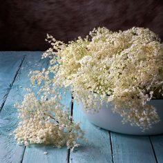 elderflow, edibl flower, blog