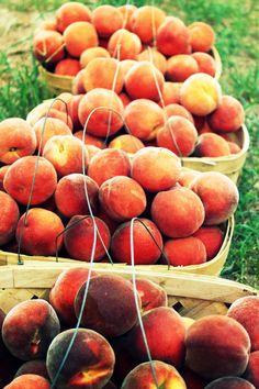 peaches! <3