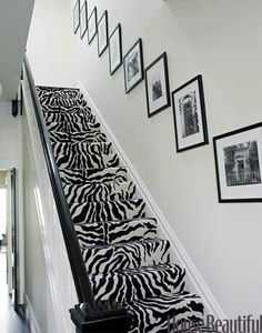 Animal print (even on the stairs)