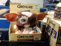 Loved Gizmo!