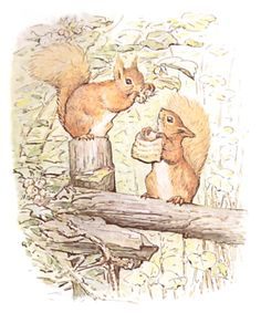 This is a Tale about a tail - a tail that belonged to a little red squirrel, and his name was Nutkin.