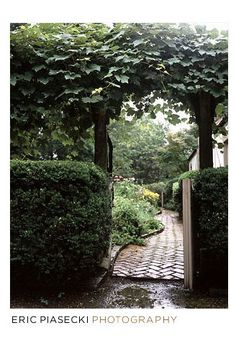 another garden gate with an inviting path.