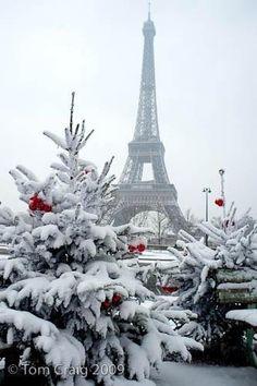 White Christmas in Paris  ♥ ♥ www.paintingyouwithwords.com #budgettravel #travel #france #paris www.budgettravel.com