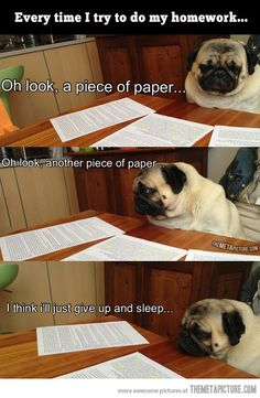 Every time I do my homework…