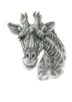 The giraffe by sschukina on deviantART