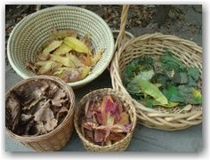 separate natural materials by color... check out their site for a great glimpse into their work with nature.